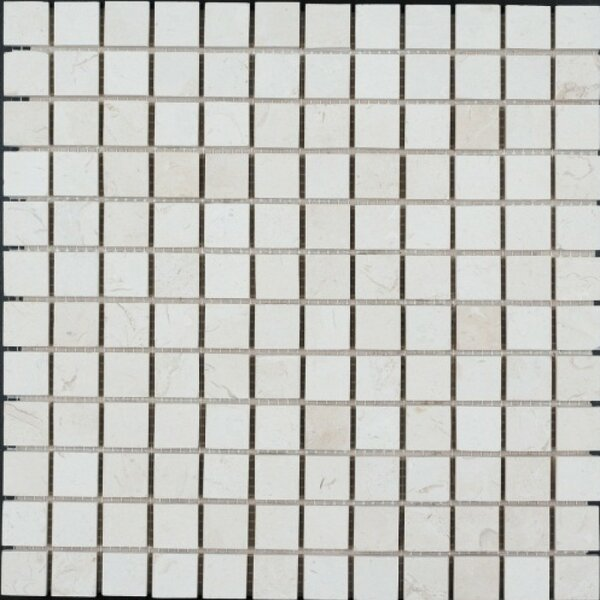1 x 1 Limestone Mosaic Tile in Corinthian Fossil by Ephesus Stones