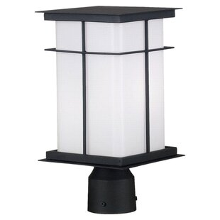 Affordable Mesa Outdoor 1-Light Lantern Head By Wildon Home ®