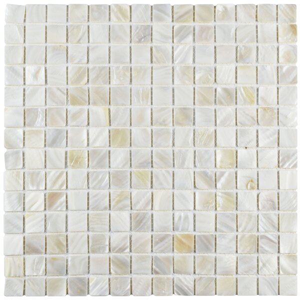 Shore 0.75 x 0.75 Seashell Mosaic Tile in White by EliteTile