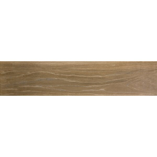 Angeles 9 x 47 Porcelain Wood Look Tile in Peak by Emser Tile