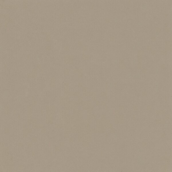 Element 24 x 24 Porcelain Field Tile in Latte Light Brown by Walkon Tile