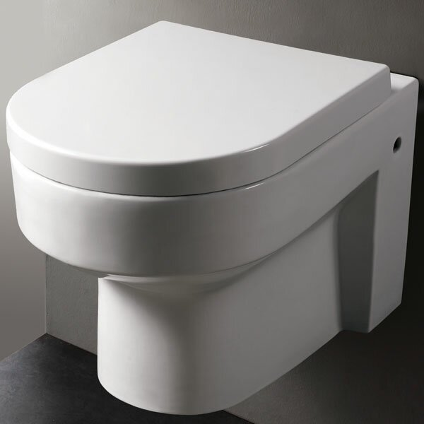 Modern Dual Flush Elongated Toilet Bowl by EAGO