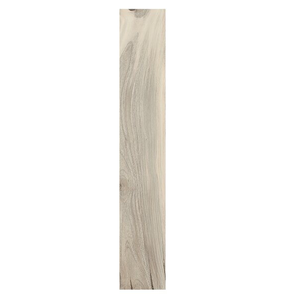 Kauri Pol Catlins 8 x 48 Porcelain Wood Look Tile in Tan by Casa Classica