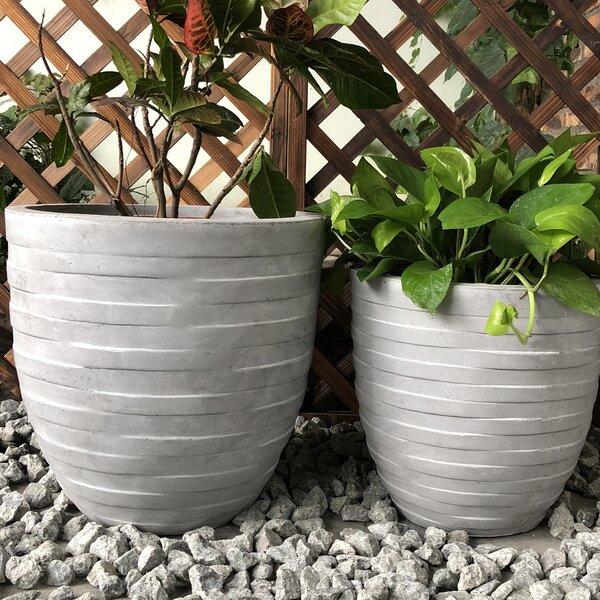 Coleshill Rough Surface Round 2-Piece Pot Planter Set by Ebern Designs