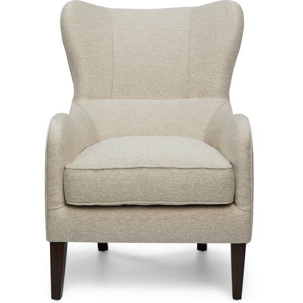 Littlehampt Wingback Chair by Alcott Hill