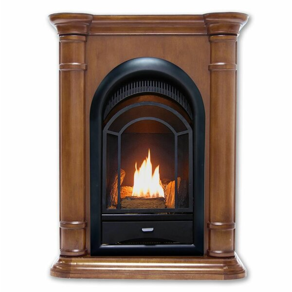 Hearthsense Vent Free Propane/Natural Gas Fireplace Insert By ProCom
