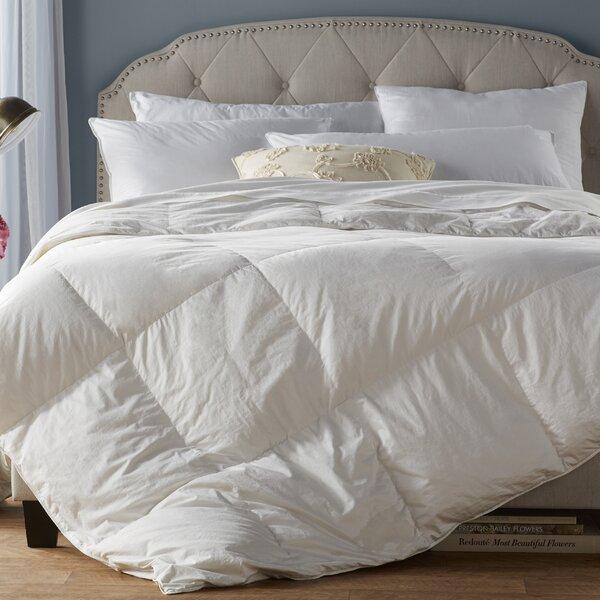 All Season Down Alternative Comforter By Alwyn Home.