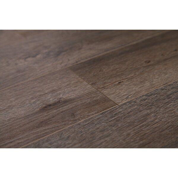 Country 47.85 x 4.96 x 12mm Laminate Flooring in Ash Oak by Dekorman