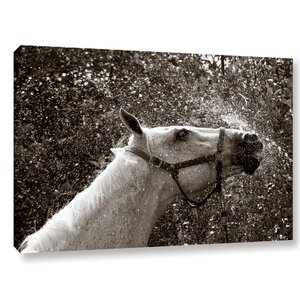 After A Shower Photographic Print on Wrapped Canvas by Laurel Foundry Modern Farmhouse