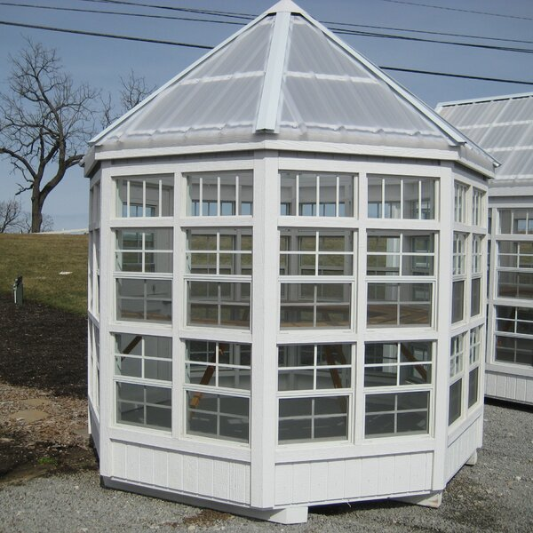 8 Ft. W x 8 Ft. D Greenhouse by Little Cottage Company