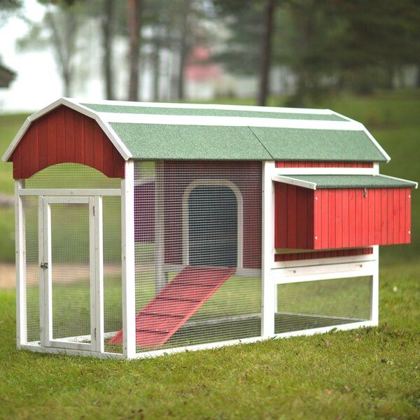 Large Barn Chicken Coop with Roosting Bar by Prevu