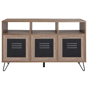 Eloisa 3 Door Accent Cabinet