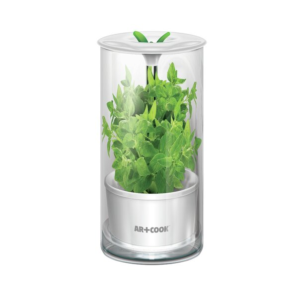 Herb Keeper Food Storage Container by Art and Cook