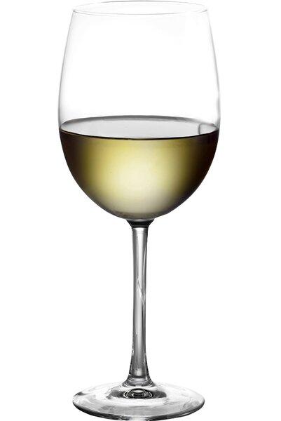 Elisabetta 19 Oz. Tulip Wine Glass (Set of 10) by Mint Pantry