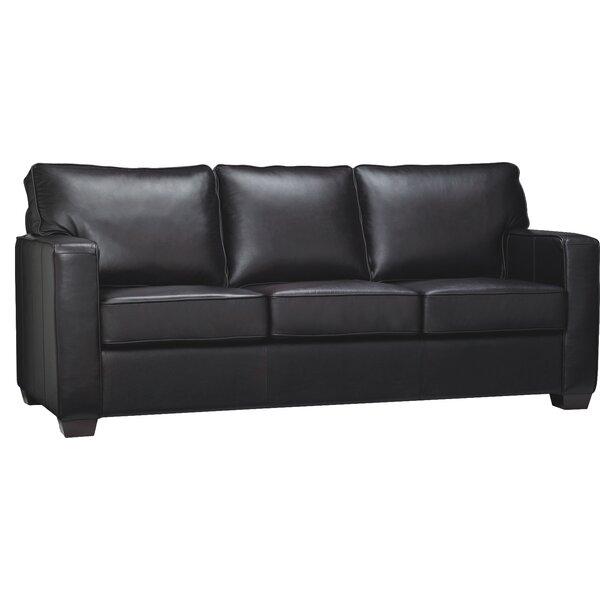 Mcnemar Leather Sleeper Sofa by Red Barrel Studio
