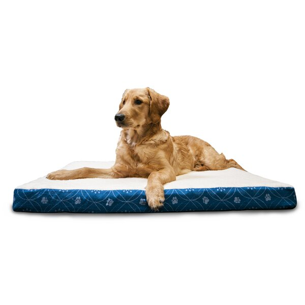 Evan Paw Decor Memory Foam Dog Bed by Archie & Oscar