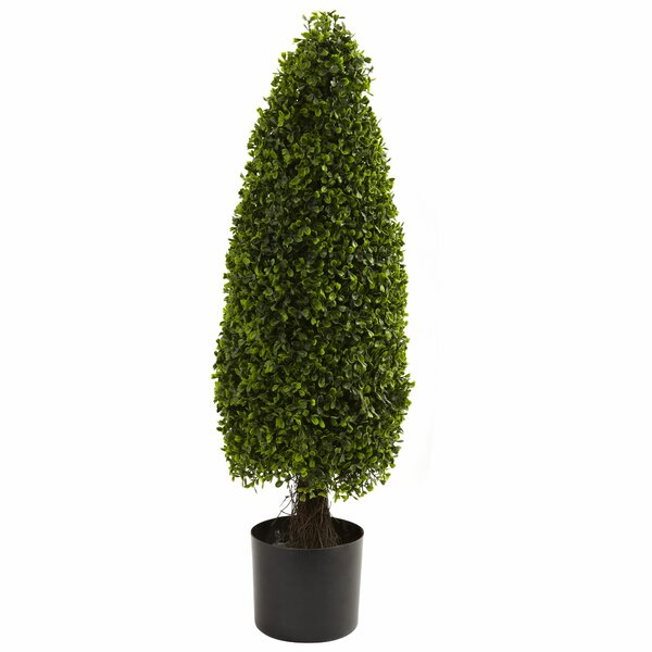 Round Topiary in Pot by Darby Home Co