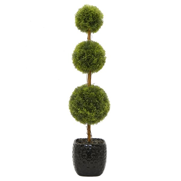 Faux Desktop Boxwood Topiary in Pot by Darby Home Co