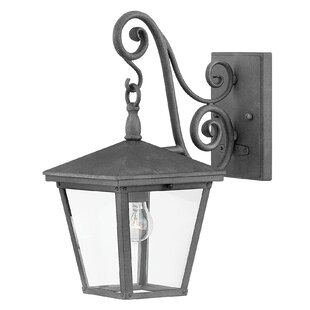 Read Reviews Trellis 1-Light Outdoor Wall Lantern By Hinkley Lighting