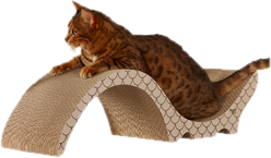 Cat Scratchers & Scratching Posts