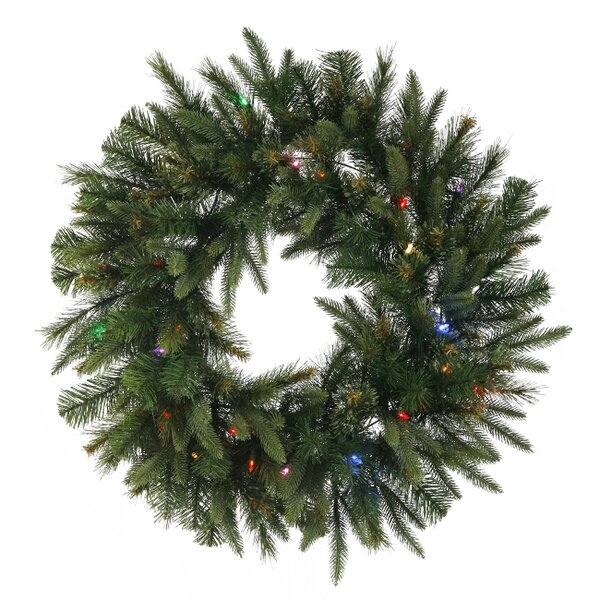 24 Lighted Artificial Mixed Cashmere Pine Christmas Wreath by Vickerman
