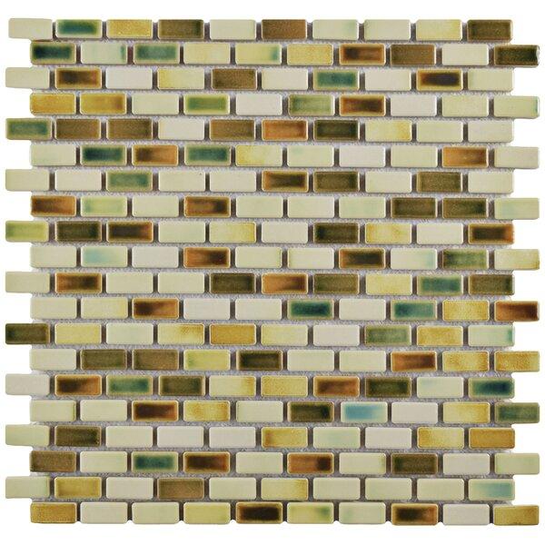 Arcadia 0.5 x 1 Porcelain Mosaic Tile in Springfield by EliteTile