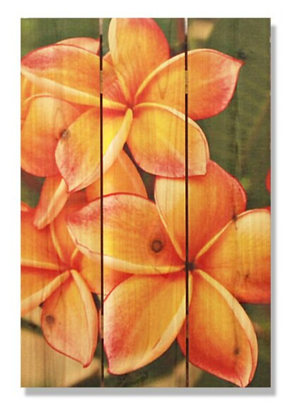 Tropical Flower Photographic Print by Gizaun Art