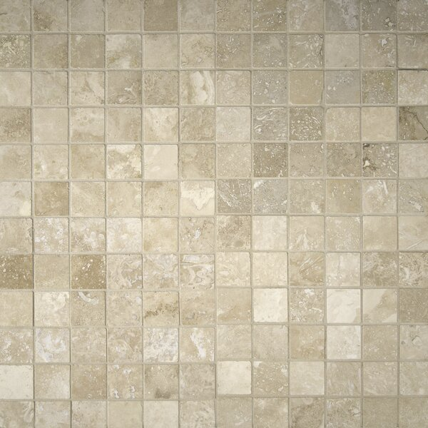 Honed Mesh Mounted 12 x 12 Natural Stone Mosaic Tile in Tuscany Ivory by MSI