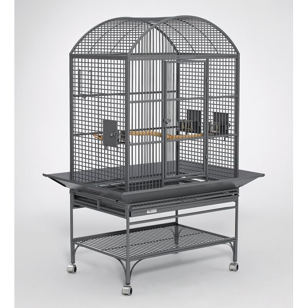 Hatcher Mediana Dome Top Bird Cage by Tucker Murphy Pet
