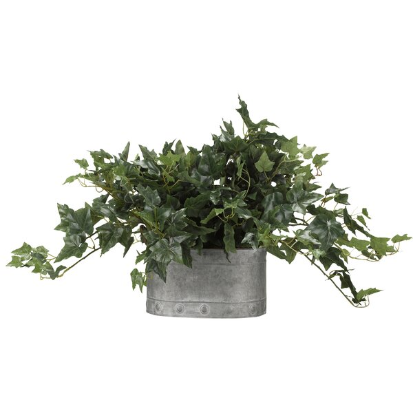 Oval Metal Ivy Plant in Planter by Gracie Oaks