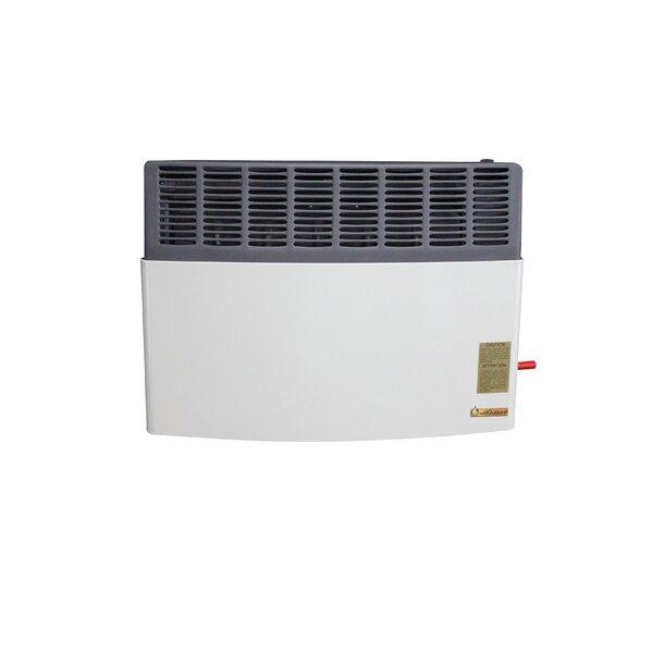 17,000 BTU LP Gas Direct Vent Heater by Ashley Hearth