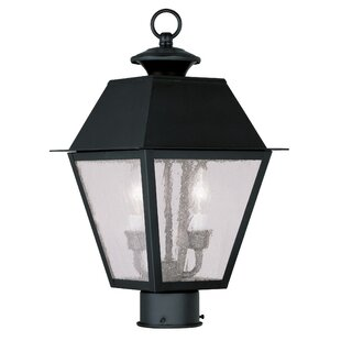 Inexpensive Cynda Outdoor 2-Light Lantern Head By Darby Home Co