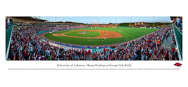 NCAA Baseball Photographic Print by Blakeway Worldwide Panoramas, Inc