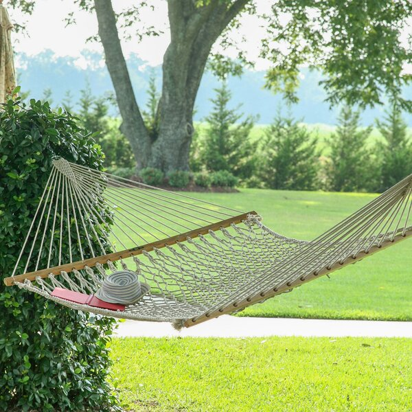Edler Cotton Rope Tree Hammock by Charlton Home