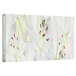 Lily Landscape Photographic Print on Canvas in White by Zipcode Design