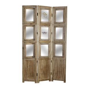 Delicieux Photo 3 Panel Room Divider