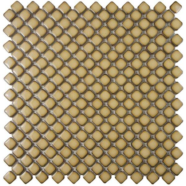 Gem 0.71 x 0.71 Porcelain Mosaic Tile in Glossy Café by EliteTile
