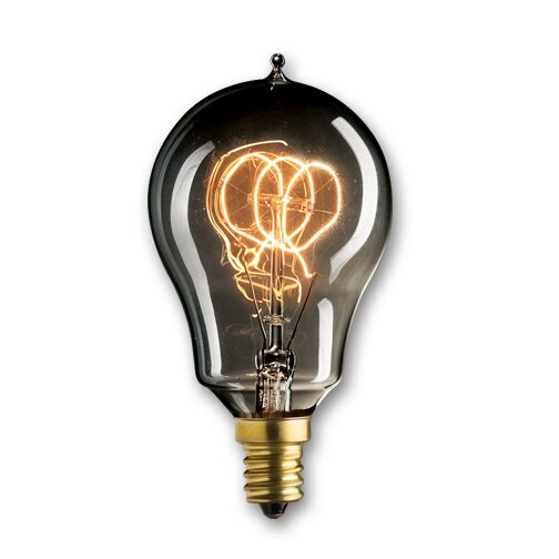 25W Smoke Incandescent Light Bulb (Set of 5) by Bulbrite Industries