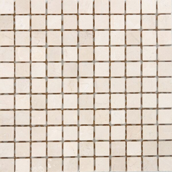 1 x 1 Marble Mosaic Tile in Unpolished Crema marfil by Epoch Architectural Surfaces