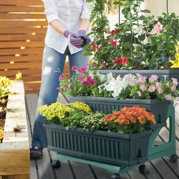 Patio Resin Vertical Garden by Apollo Exports International Inc.