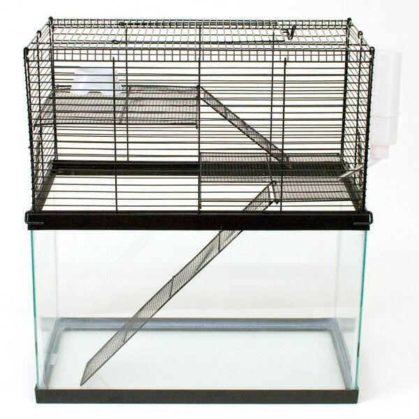 Chew Proof High Rise Small Animal Cage by Ware Manufacturing