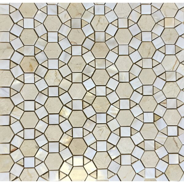 Bloom Wall Polished 12 x 12 C.Marfil and White Shell Mosaic Tile in White by Seven Seas