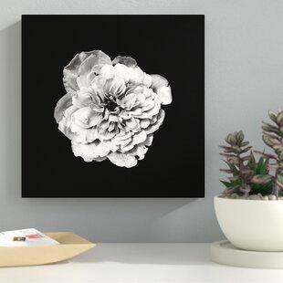 Black and white flower art wayfair white flower on black background photographic print on canvas mightylinksfo