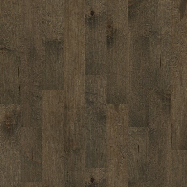 Locust Hill 6 3/10 Engineered Maple Hardwood Flooring in Newark by Shaw Floors