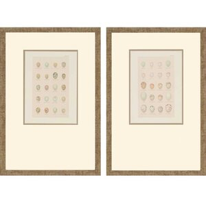 Egg Study by Seebohm 2 Piece Framed Graphic Art Set by Paragon