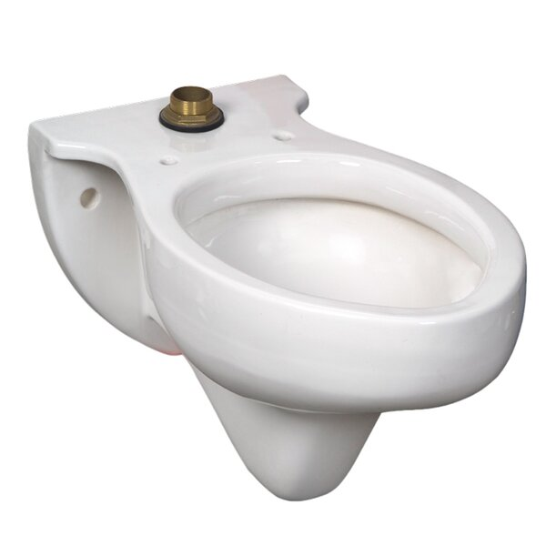 Rapidway Elongated Toilet Bowl by American Standard