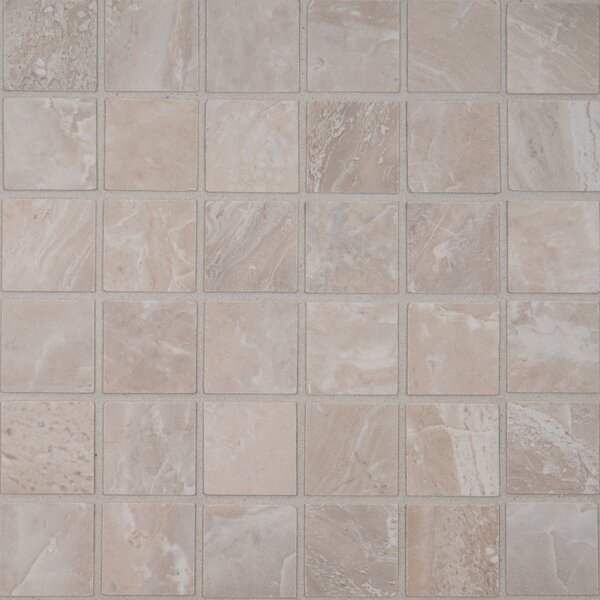 Onyx 2 x 2 Porcelain Mosaic Tile in Grigio by MSI