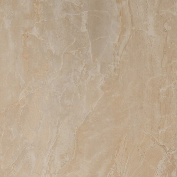 Pietra Onyx 18 x 18 Porcelain Field Tile in High Gloss by MSI