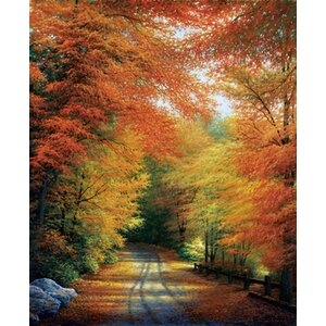 'Autumn in New England' by Charles White Painting Print on Wrapped Canvas by Hadley House Co