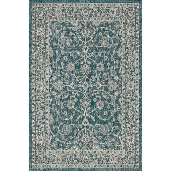 Haupt Vine and Border Textured Weave Teal Indoor/Outdoor Area Rug